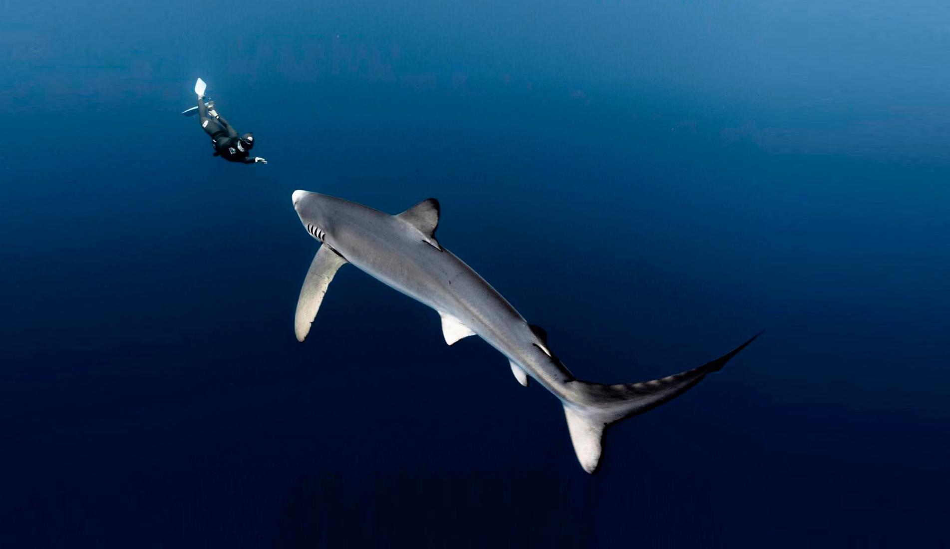 fotos-adrenalina-watersports-20